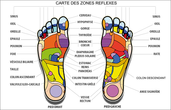 zone-reflex